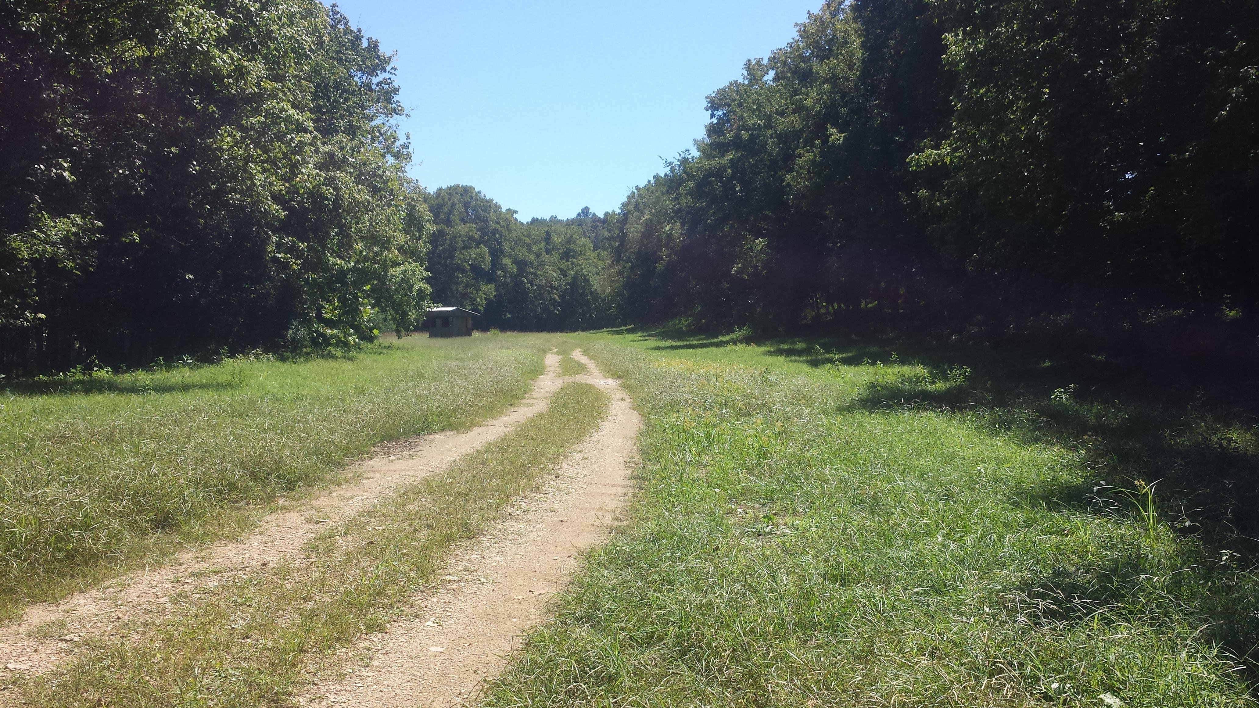 field, farm