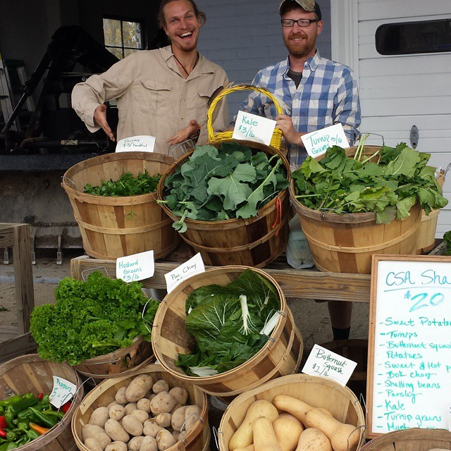 harvested produce, farmers market, interns tennessee nashville csa