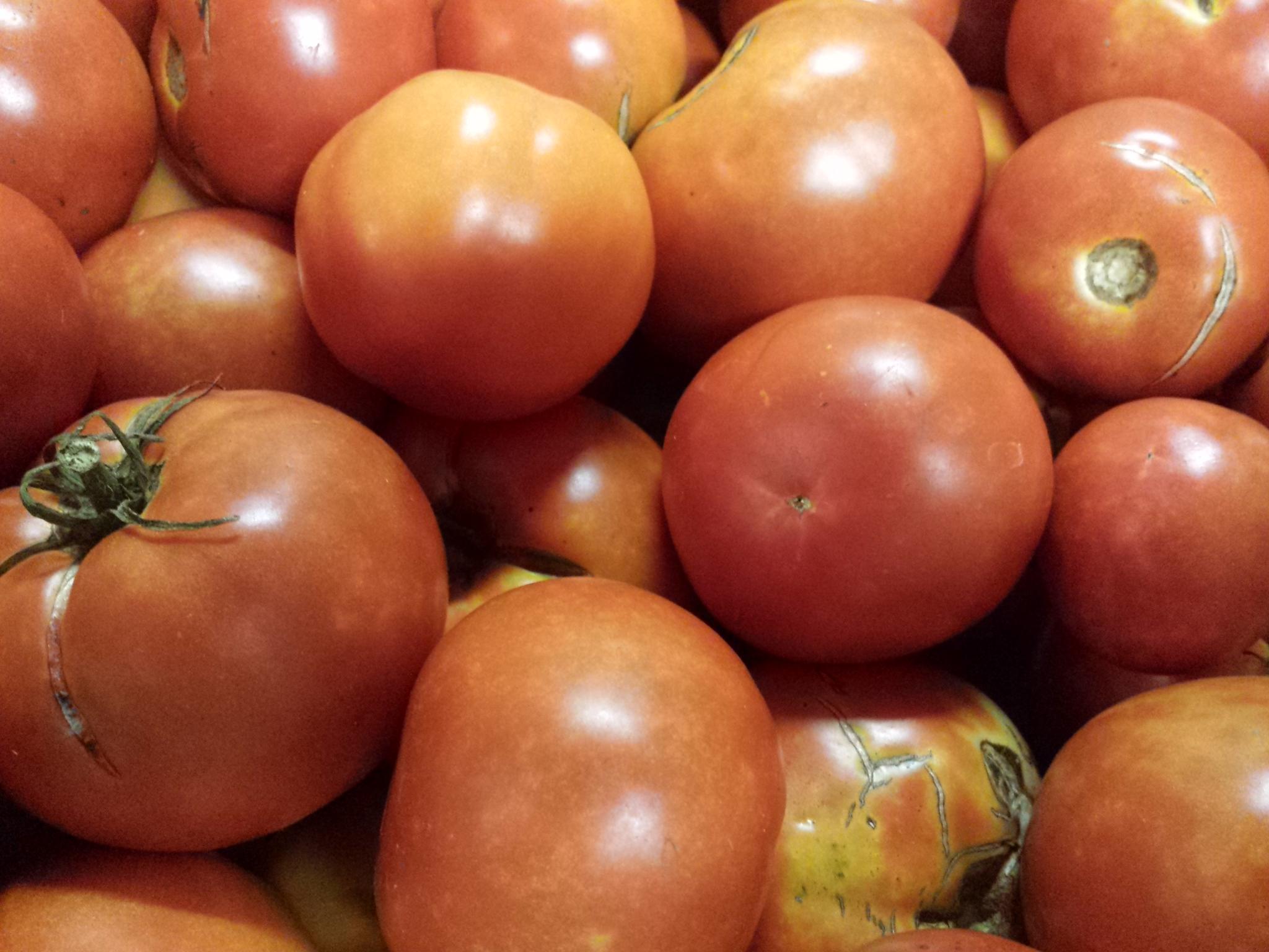 organictomatoes