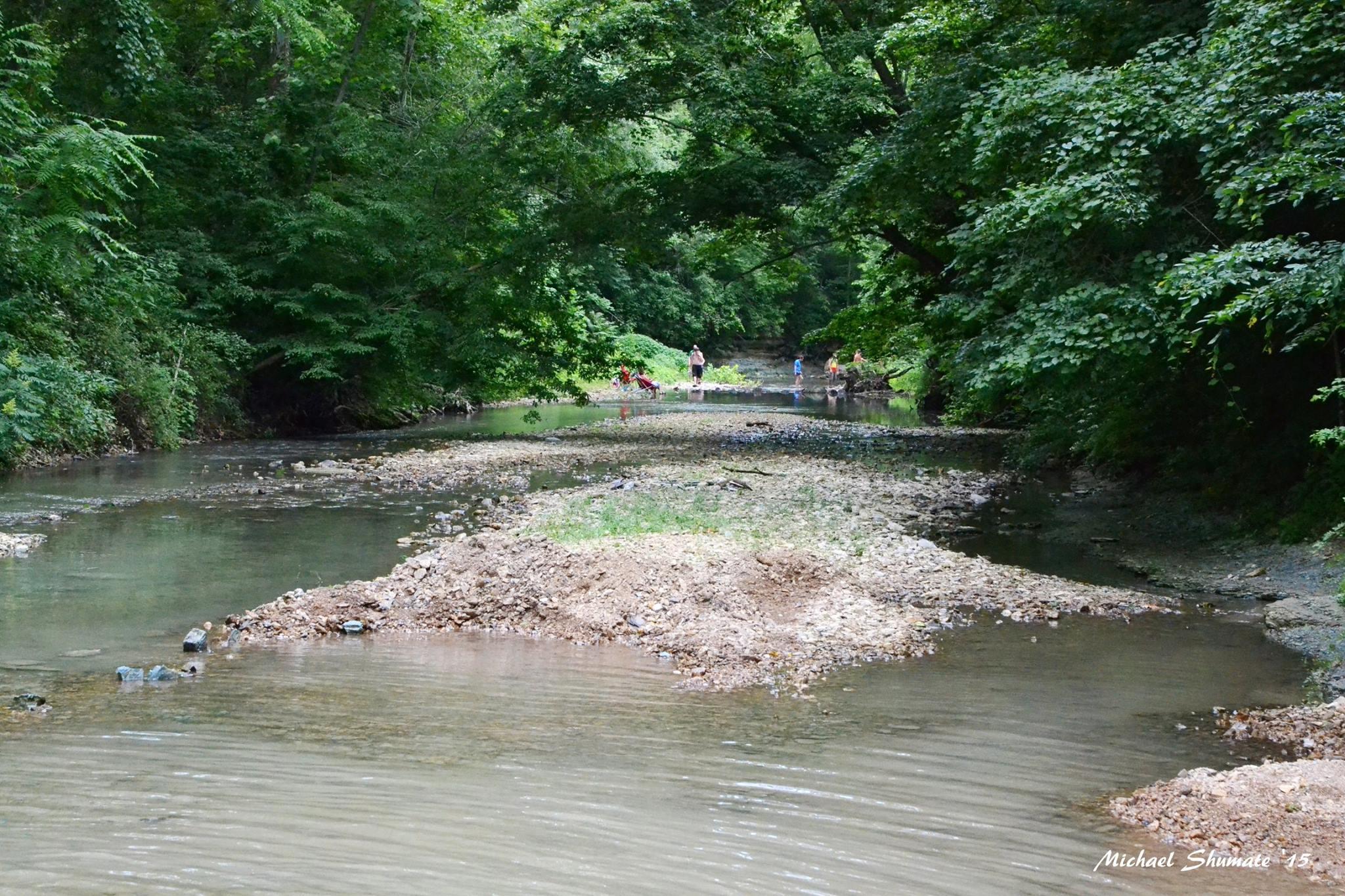 creek people, woods, serene