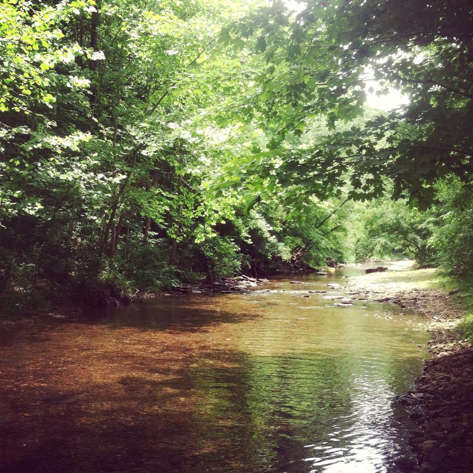 ss 2015 creek